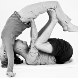 Flying Therapeutics and the benefit of the Inverted Therapies - a Yogic view
